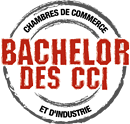 Label Bachelor des CCI